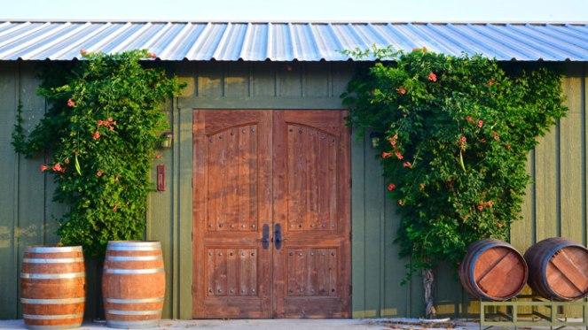 Rancho-Ponte-Vineyard-3-Web-Res